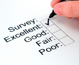 How Paid Surveys Work